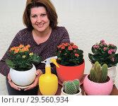 Купить «A housewife caring for plants in pots», фото № 29560934, снято 20 ноября 2017 г. (c) Володина Ольга / Фотобанк Лори