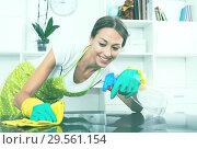 woman cleaning home. Стоковое фото, фотограф Яков Филимонов / Фотобанк Лори