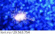 Купить «Sparkler and Blue Christmas or New Year background», видеоролик № 29563754, снято 13 декабря 2018 г. (c) Сергей Петерман / Фотобанк Лори