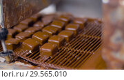 Купить «candies processing by chocolate coating machine», видеоролик № 29565010, снято 10 декабря 2018 г. (c) Syda Productions / Фотобанк Лори