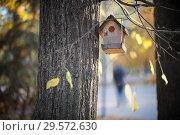 Купить «Birdhouse hanging on a tree in the autumn park», фото № 29572630, снято 16 октября 2018 г. (c) Константин Шишкин / Фотобанк Лори