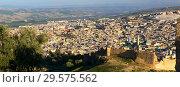Купить «Aerial panorama of Medina in Fes, Morocco», фото № 29575562, снято 15 февраля 2018 г. (c) Михаил Коханчиков / Фотобанк Лори