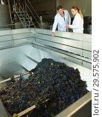 Купить «Two engineers of winery controlling process», фото № 29575902, снято 13 сентября 2018 г. (c) Яков Филимонов / Фотобанк Лори