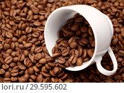 Купить «Белая чашка на кофейных зернах», фото № 29595602, снято 5 февраля 2012 г. (c) Александр Гаценко / Фотобанк Лори
