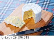 Купить «Delicious soft blue cheese», фото № 29596318, снято 20 февраля 2019 г. (c) Яков Филимонов / Фотобанк Лори