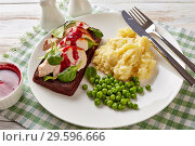 Купить «open faced hot roast turkey breast sandwich», фото № 29596666, снято 16 декабря 2018 г. (c) Oksana Zh / Фотобанк Лори