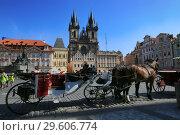Купить «Prague, Czech Republic, September 18, 2018. Two brown horses waiting for a walk through the old town of Prague», фото № 29606774, снято 18 сентября 2018 г. (c) Яна Королёва / Фотобанк Лори