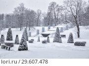 Купить «Петергоф зимой, каскад Шахматная гора», фото № 29607478, снято 22 января 2018 г. (c) Юлия Бабкина / Фотобанк Лори