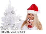 Купить «Young woman in Santa Claus cap.», фото № 29619554, снято 22 октября 2013 г. (c) Мельников Дмитрий / Фотобанк Лори