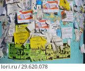 Купить «Тумба с объявлениями на улице», эксклюзивное фото № 29620078, снято 5 мая 2015 г. (c) lana1501 / Фотобанк Лори