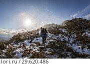 Купить «Гора Званка, остров Сахалин», фото № 29620486, снято 4 ноября 2018 г. (c) Поволкович Федор / Фотобанк Лори