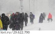 Купить «Люди идут по пешеходной зоне во время зимнего ненастья», видеоролик № 29622790, снято 28 декабря 2018 г. (c) А. А. Пирагис / Фотобанк Лори