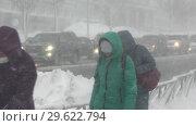Купить «Люди идут по пешеходной дорожке во время сильного снегопада», видеоролик № 29622794, снято 28 декабря 2018 г. (c) А. А. Пирагис / Фотобанк Лори