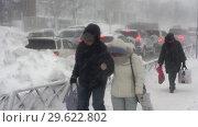 Купить «Горожане идут по тротуару во время пурги», видеоролик № 29622802, снято 28 декабря 2018 г. (c) А. А. Пирагис / Фотобанк Лори