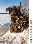 Купить «Зимний речной пейзаж», фото № 29626310, снято 12 декабря 2018 г. (c) Владимир Федечкин / Фотобанк Лори