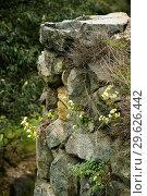 Купить «Фрагмент крепостной стены в монастырском комплексе Ахтала, Армения», фото № 29626442, снято 27 сентября 2018 г. (c) Инна Грязнова / Фотобанк Лори