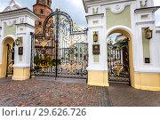 Купить «Openwork gates from forged metal at the Kazan Kremlin», фото № 29626726, снято 10 июня 2018 г. (c) FotograFF / Фотобанк Лори