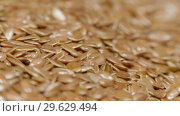 Купить «Pile of flax seeds on rotating table, macro view, healthy food», видеоролик № 29629494, снято 9 июля 2020 г. (c) Dzmitry Astapkovich / Фотобанк Лори