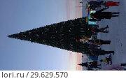 Купить «Новогодняя елка в городе Петропавловске-Камчатском, вечерний вид. Time Lapse. Вертикальное видео», видеоролик № 29629570, снято 1 января 2019 г. (c) А. А. Пирагис / Фотобанк Лори