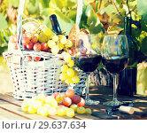 Купить «red wine ripe grapes and picnic basket on table in vineyard», фото № 29637634, снято 11 сентября 2017 г. (c) Татьяна Яцевич / Фотобанк Лори