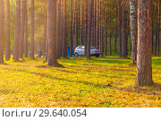 Купить «Parking for rest on the White River in the early sunny morning.», фото № 29640054, снято 1 сентября 2018 г. (c) Акиньшин Владимир / Фотобанк Лори