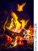 Купить «Close-up of a burning beautiful bonfire on a black night background, burning glowing logs,», фото № 29640238, снято 3 сентября 2018 г. (c) Акиньшин Владимир / Фотобанк Лори