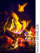 Close-up of a burning beautiful bonfire on a black night background, burning glowing logs, Стоковое фото, фотограф Акиньшин Владимир / Фотобанк Лори