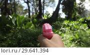 Crop hand with toy gun in countryside. Стоковое видео, видеограф Ekaterina Demidova / Фотобанк Лори