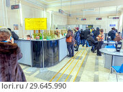 Купить «Russia, Samara, February 2017: unemployed citizens in the employment service in search of work. Text in Russian: language municipal enterprise accomplishment, job offer», фото № 29645990, снято 20 февраля 2017 г. (c) Акиньшин Владимир / Фотобанк Лори