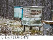 Купить «Ульи на зимнем хранении», фото № 29646478, снято 9 ноября 2018 г. (c) Яковлев Сергей / Фотобанк Лори