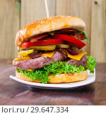 Купить «Tasty double-decker grilled hamburger with beef, tomato, cheese, cucumber», фото № 29647334, снято 19 февраля 2019 г. (c) Яков Филимонов / Фотобанк Лори