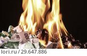 Купить «Bunch of burning one hundred Euro banknotes rotate on a black background close-up», видеоролик № 29647886, снято 31 декабря 2018 г. (c) Алексей Кузнецов / Фотобанк Лори