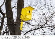 Купить «Wooden yellow birdhouse on a high tree in winter park», фото № 29659346, снято 18 февраля 2018 г. (c) FotograFF / Фотобанк Лори