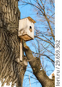 Купить «Wooden birdhouse on a high tree in the winter park», фото № 29659362, снято 23 февраля 2018 г. (c) FotograFF / Фотобанк Лори