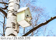 Купить «Wooden birdhouse on a birch tree in the winter park», фото № 29659370, снято 23 февраля 2018 г. (c) FotograFF / Фотобанк Лори