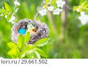 Купить «Easter eggs in nest outdoor», фото № 29661502, снято 5 мая 2018 г. (c) Майя Крученкова / Фотобанк Лори