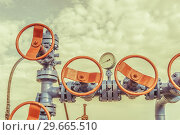 Купить «Wellheads with valve armature on a oil field», фото № 29665510, снято 24 мая 2016 г. (c) bashta / Фотобанк Лори
