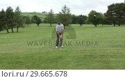 Купить «Golf Chip Shot», видеоролик № 29665678, снято 19 февраля 2020 г. (c) Wavebreak Media / Фотобанк Лори