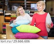 Купить «Girl and woman looking for pillow», фото № 29666606, снято 15 февраля 2017 г. (c) Яков Филимонов / Фотобанк Лори