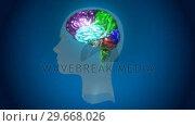 Купить «Animated High Definition 3D Human Brain», видеоролик № 29668026, снято 21 февраля 2019 г. (c) Wavebreak Media / Фотобанк Лори