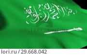 Купить «Saudi Arabian Flag in High Definition», видеоролик № 29668042, снято 21 февраля 2019 г. (c) Wavebreak Media / Фотобанк Лори