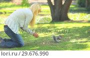 Young woman feeding a squirrel . Стоковое видео, агентство Wavebreak Media / Фотобанк Лори