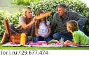 Купить «Family picnic on lawn», видеоролик № 29677474, снято 6 ноября 2010 г. (c) Wavebreak Media / Фотобанк Лори