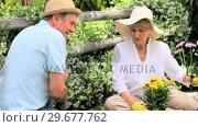 Retired couple with hats doing some gardening. Стоковое видео, агентство Wavebreak Media / Фотобанк Лори