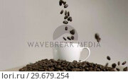 Купить «Coffee beans dropping in cup in super slow motion», видеоролик № 29679254, снято 26 января 2012 г. (c) Wavebreak Media / Фотобанк Лори