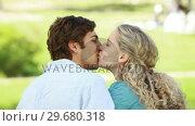 Купить «Rear view of a couple beside each other sharing a kiss», видеоролик № 29680318, снято 17 ноября 2011 г. (c) Wavebreak Media / Фотобанк Лори