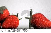 Купить «Strawberries in super slow motion receiving drops», видеоролик № 29681750, снято 16 января 2019 г. (c) Wavebreak Media / Фотобанк Лори