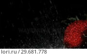 Купить «Strawberries in super slow motion being wet», видеоролик № 29681778, снято 25 мая 2019 г. (c) Wavebreak Media / Фотобанк Лори