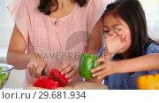 Купить «Girl handing a pepper to her mother to be cut», видеоролик № 29681934, снято 25 ноября 2011 г. (c) Wavebreak Media / Фотобанк Лори