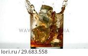 Купить «Ice cube falling in whiskey tumbler», видеоролик № 29683558, снято 21 ноября 2012 г. (c) Wavebreak Media / Фотобанк Лори